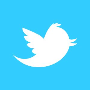 twitter_newbird_boxed_whiteonblue